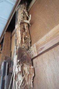 住宅の耐震化リフォーム施工前の白アリ被害写真